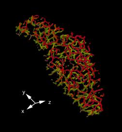 Fig1_rev-1